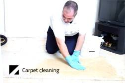 Carpet Dry Cleaning Kensington 3031