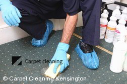 Carpet Cleaning Kensington 3031