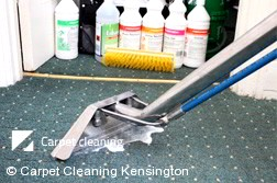 Professional Carpet Cleaners Kensington