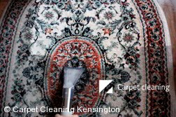 Kensington 3031 Rug Cleaners